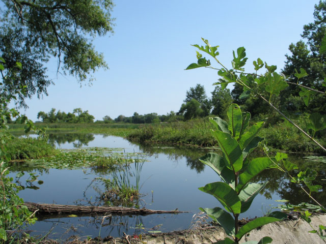 Bruce Lake