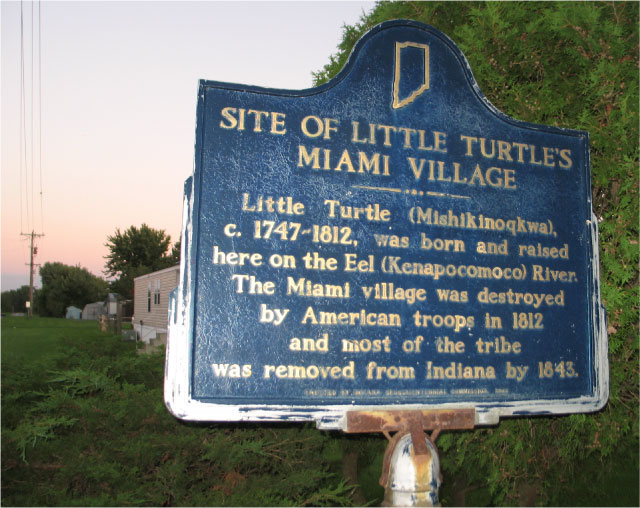 Little Turtle's Village