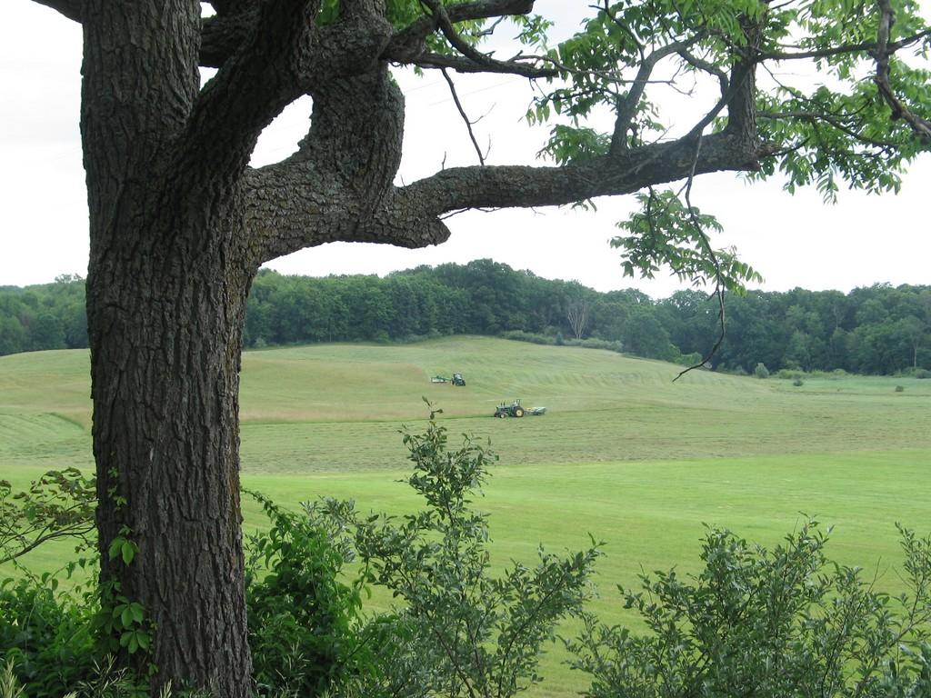 Northwest corner of Irving Township