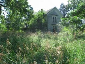 Burlington Township rectangularity