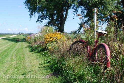 flower-bicycle-0746-wm